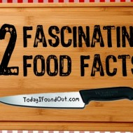 12 Interesting Facts About Foods