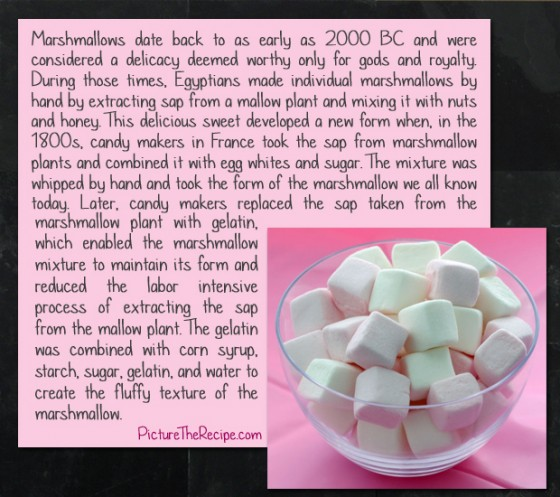 Marshmallows Were Originally Made From The Marshmallow Plant