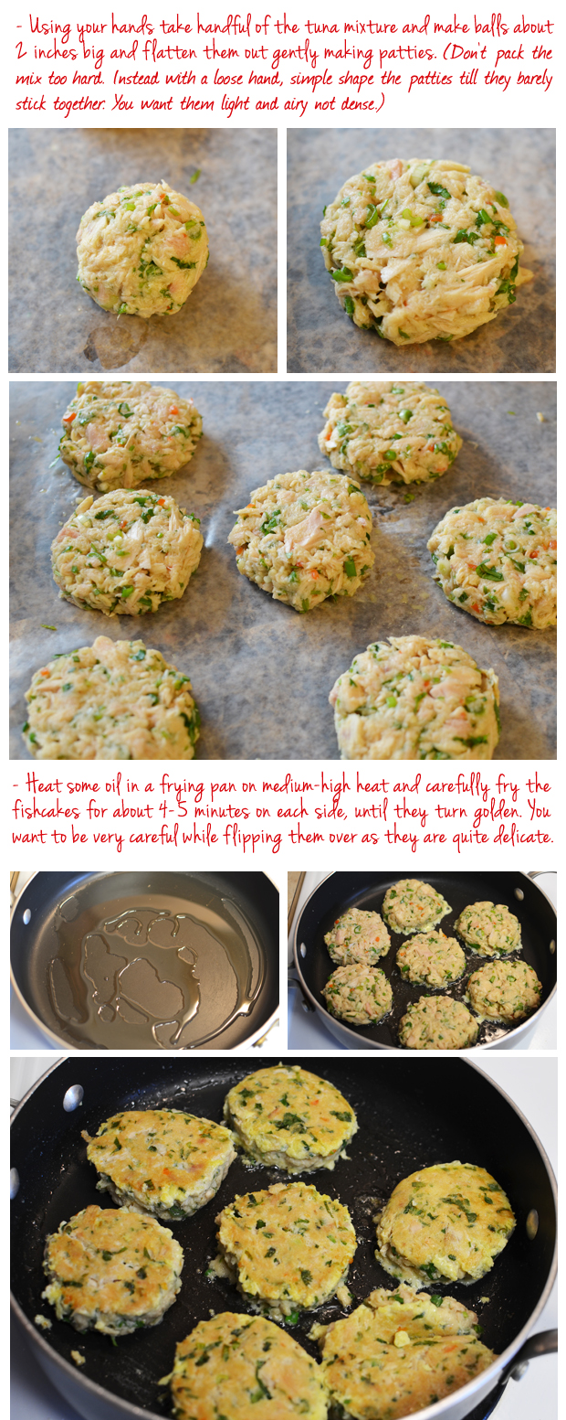 Spicy tuna fishcakes picture the recipe for Canned fish recipes