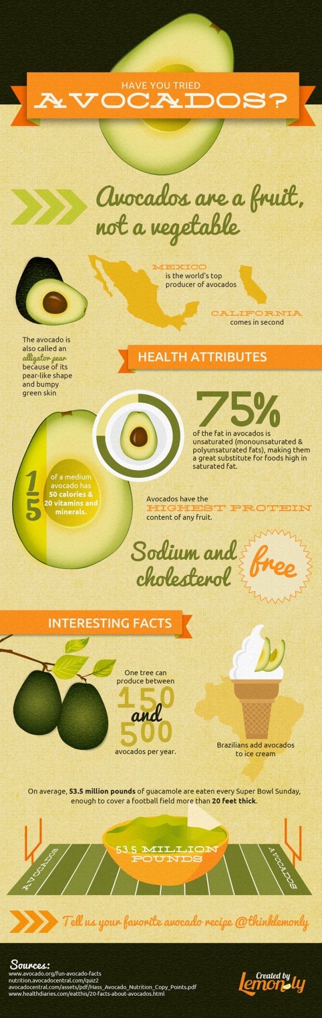 Avocado Infographic