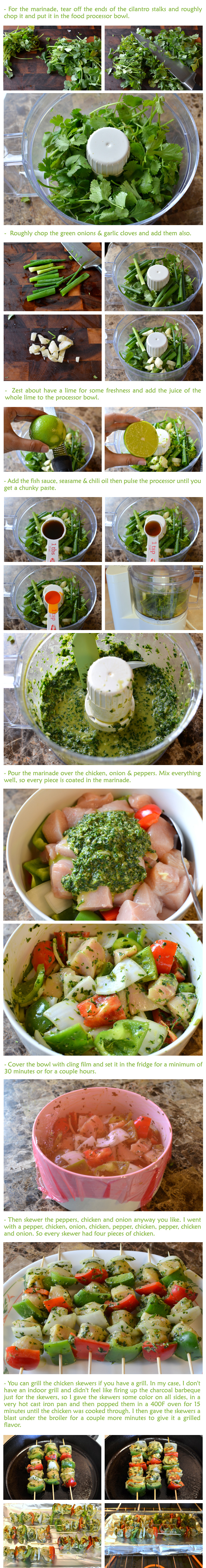 Cilantro-Lime Chicken Skewers Recipe (Part-2)