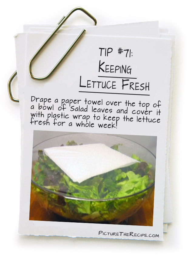 Picture The Recipe Tips - Keeping Lettuce Fresh