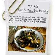 How To Tell Bad Mussels