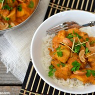 Cashew Chicken Curry (Chicken Korma)